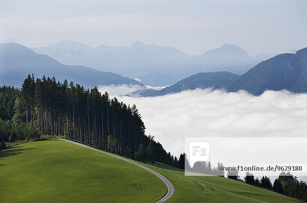 Österreich  Oberösterreich  Salzkammergut  Mondsee  Forststraße und Wolken