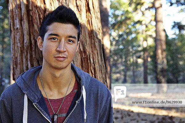 Portrait eines jungen Mannes im Wald  Los Angeles  Kalifornien  USA