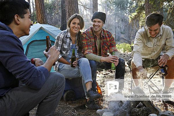 Vier junge erwachsene Freunde am Lagerfeuer im Wald  Los Angeles  Kalifornien  USA