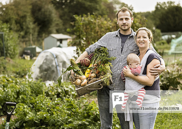 Schrebergarten stehend Mann Frische lächeln Gemüse halten jung voll