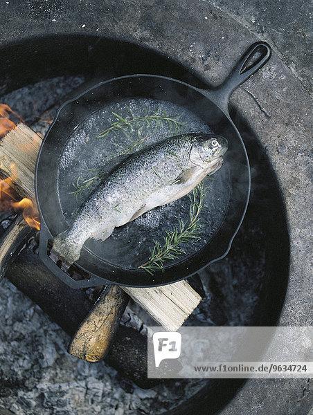 Fisch Pisces über Feuer Außenaufnahme Braten