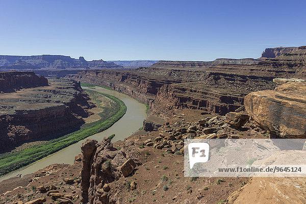 Gooseneck Overlook und Colorado River  Island in the Sky  Canyonlands-Nationalpark  Moab  Utah  USA  Nordamerika
