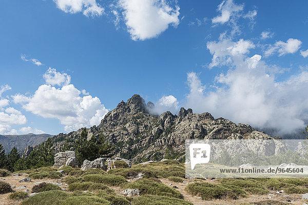 Felsige Berglandschaft  Col de Bavella  Bavella-Massiv  Korsika  Frankreich  Europa