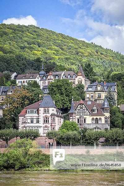 Historische Häuser am Ufer des Neckar  Heidelberg  Baden-Württemberg  Deutschland  Europa