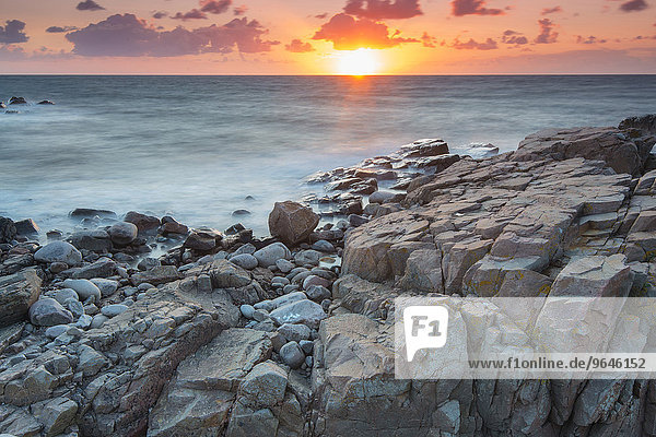 Abendstimmung am Küstenabschnitt Hovs Hallar  Naturschutzgebiet  Bjärehalvön Halbinsel  Bastad  Skåne län  Schweden  Europa