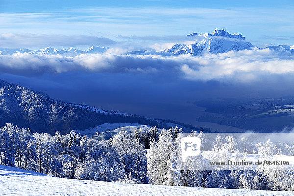 Pilatus in Winterlandschaft mit Zugersee vorn  Zugerberg  Kanton Zug  Schweiz  Europa