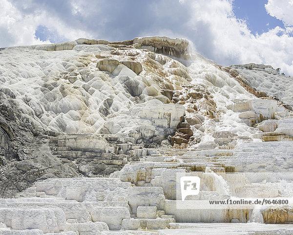 Sinterterrasse Palette Spring der Lower Terrace  Mammoth Hot Springs  Yellowstone-Nationalpark  Wyoming  USA  Nordamerika