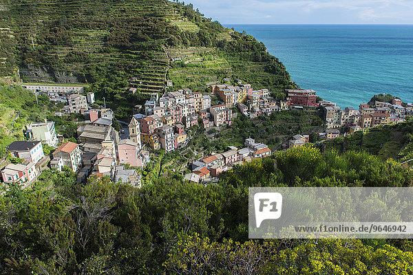 Fischerdorf Manarola  Cinque Terre  UNESCO-Weltkulturerbe  Italienische Riviera  Ligurien  Levante  Italien  Europa