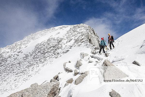 Bergsteiger beim Abstieg vom Löffler  hier an der Gipfelflanke  Zillertaler Alpen  Mayrhofen  Tirol  Österreich  Alpen  Europa