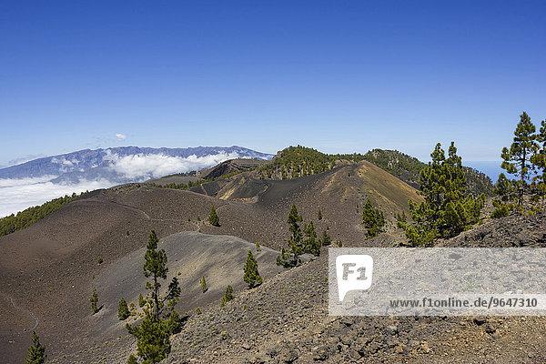 'Blick über Vulkane  Vulkanlandschaft  dahinter Caldera de Taburiente  ''Ruta de los Volcanes''  Wanderweg  Vulkanroute  Naturpark Cumbre Vieja  La Palma  Kanarische Inseln  Spanien  Europa'