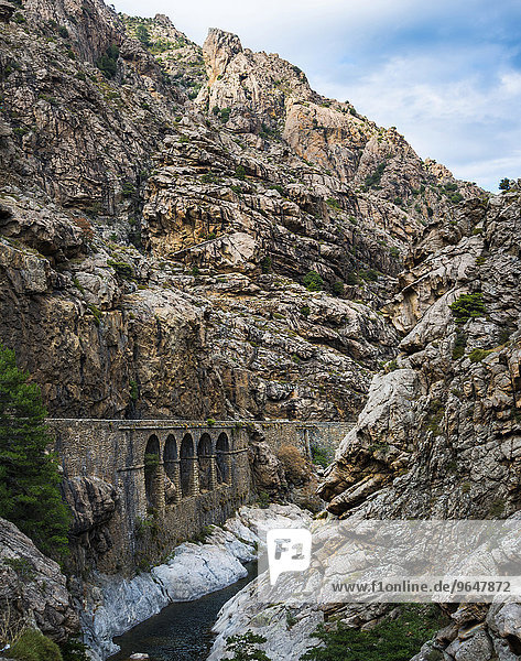 Schmale Straße an einem Fluss durchs Gebirge  Korsika  Frankreich  Europa