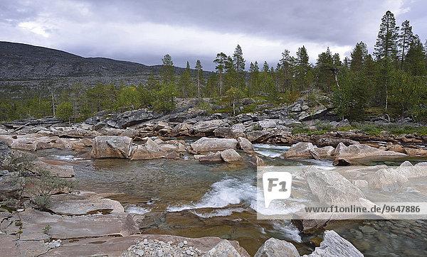 Felsen und Steine im Gebirgsfluss Luonosjåhkå im Saltdal  nahe dem Polarkreis  Norwegen  Europa