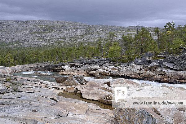 Gebirgsfluss Luonosjåhkå im Saltdal  nahe dem Polarkreis  Norwegen  Europa