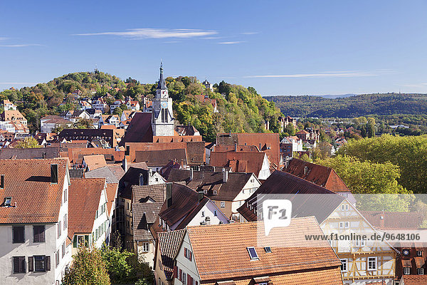 Old town with collegiate church  Tubingen  Baden-Württemberg  Germany  Europe