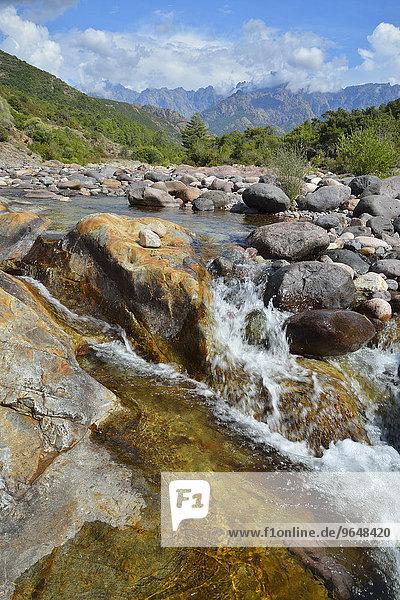 Landschaft am Fluß Fango  Fangotal  Haute-Corse  Korsika  Frankreich  Europa