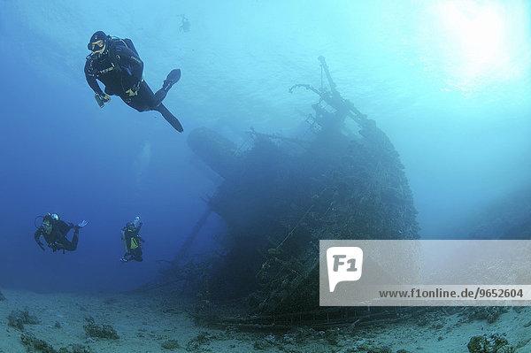 Taucher betrachtet Schiffswrack der Giannis D  Rotes Meer  Scharm El-Scheich  Ägypten  Afrika