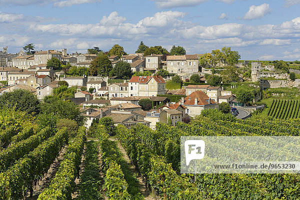 Weinberg  Altstadt  UNESCO Weltkulturerbe  Saint-Emilion  Département Gironde  Aquitanien  Frankreich  Europa