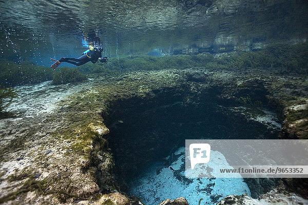 Taucher an Devil's Eye Quelle am Eingang zum riesigen Höhlensystem  Santa Fe River  Florida  USA  Nordamerika