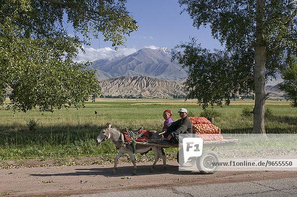 Eselskarre mit Bauern  zwischen Bishkek und Song Köl  Kirgisistan  Zentralasien