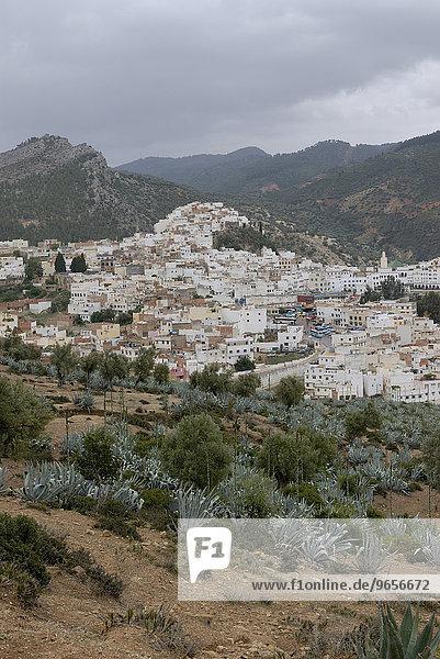 Ausblick auf Moulay Idris  eine der heiligen Städte des Islam  Marokko  Afrika