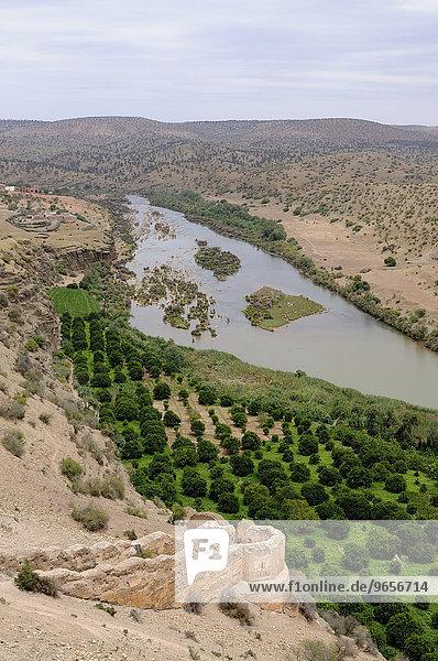 Wüstenlandschaft mit der alten Burgruine Boulaouane am Fluss Oued Oum  Marokko  Afrika