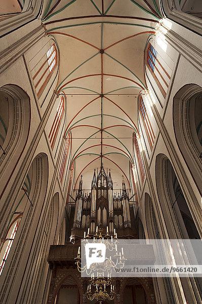 Gotisches Gewölbe  Anfang 13. Jhd.  unten Orgel von Friedrich Ladegast  1868  Schweriner Dom St. Marien und St. Johannis  Backsteingotik  1248  Schwerin  Mecklenburg-Vorpommern  Deutschland  Europa