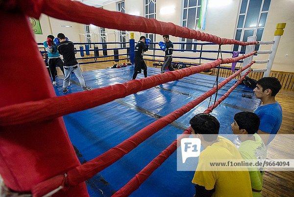 hoch oben Sport Kunst Student klingeln Samarkand Zug Usbekistan Fischschwarm