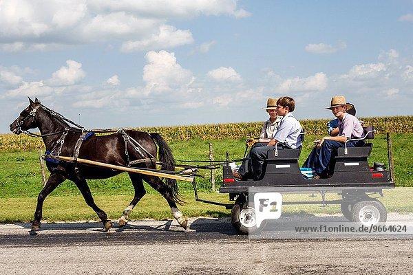 Freundschaft Junge - Person Kleidung Fuhrwerk Amische Illinois