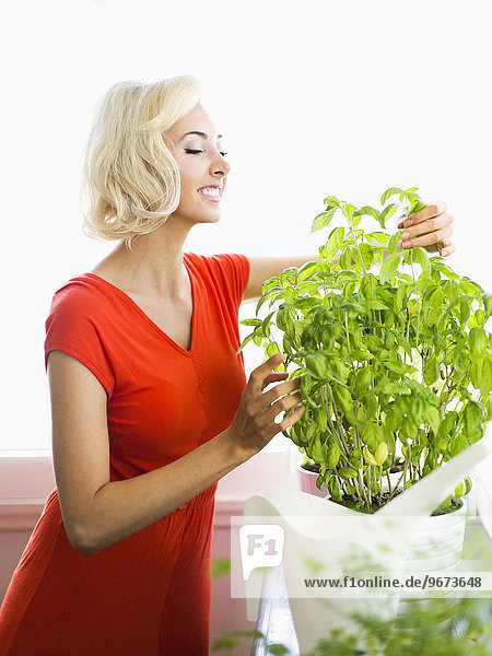 Woman in red dress touching potted plant
