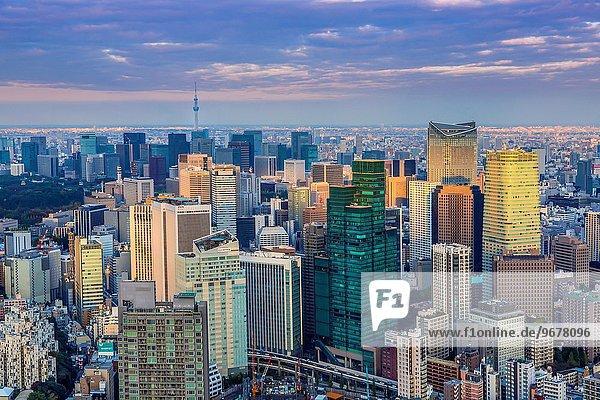 Baum Himmel Stadt Tokyo Hauptstadt Japan