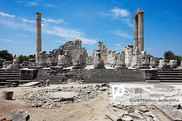 Ruins of the Temple of Apollo. Didim  Aydin Province  Turkey.