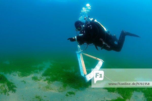 Wasser Fotografie Assistent Unterwasseraufnahme unter Wasser streichen streicht streichend anstreichen anstreichend schwimmen Künstler