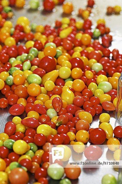 Tomaten zum Einlegen
