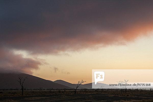 Erstes Morgenlicht  Sonnenaufgang am Sossusvlei  Namib-Wüste  Namib Naukluft Park  Namibia  Afrika