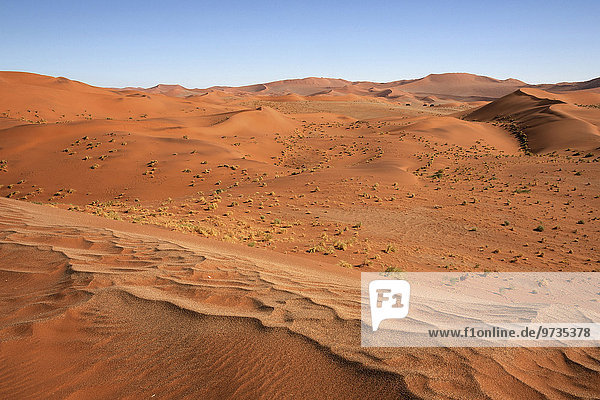 Sanddünen  Sossusvlei  Namib-Wüste  Namib Naukluft Park  Namibia  Afrika