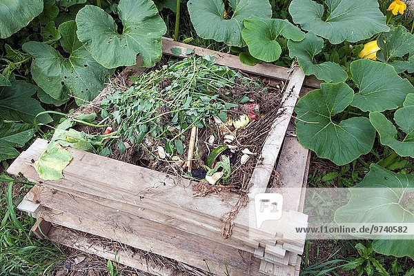 Haufen Pflanze Garten Kürbis Düngemittel