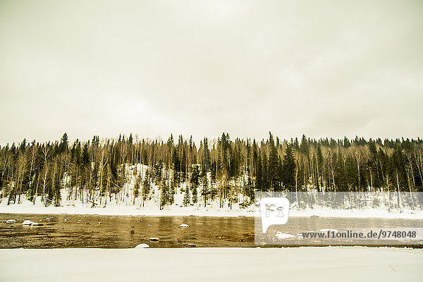nahe Baum Schnee Fluss