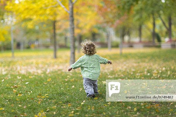 Europäer Junge - Person rennen Rasen Gras Europäer,Junge - Person,rennen,Rasen,Gras