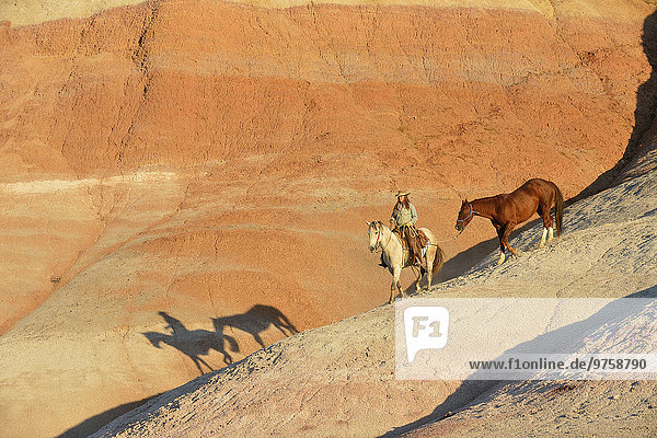 USA  Wyoming  Cowgirl mit zwei Pferden in Badlands