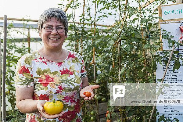 Frau im Gewächshaus mit roten und gelben Tomaten