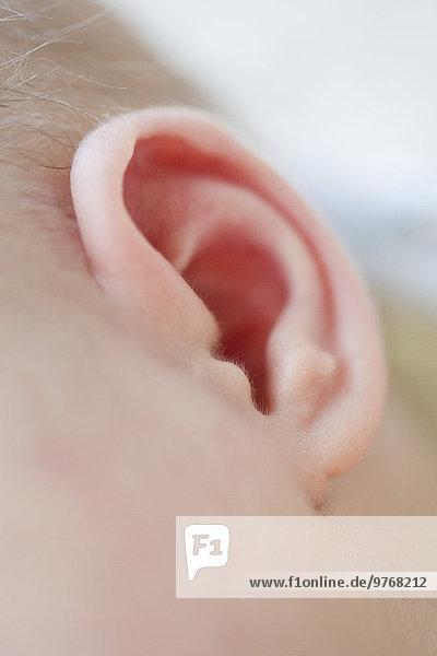 Ohr eines eine Woche alten weiblichen Babys