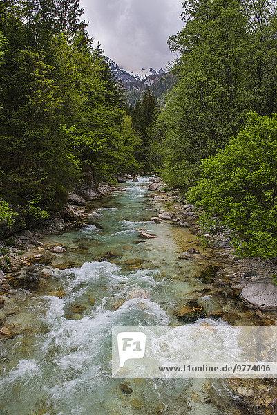 Nationalpark Europa Tal Fluss Alpen Slowenien