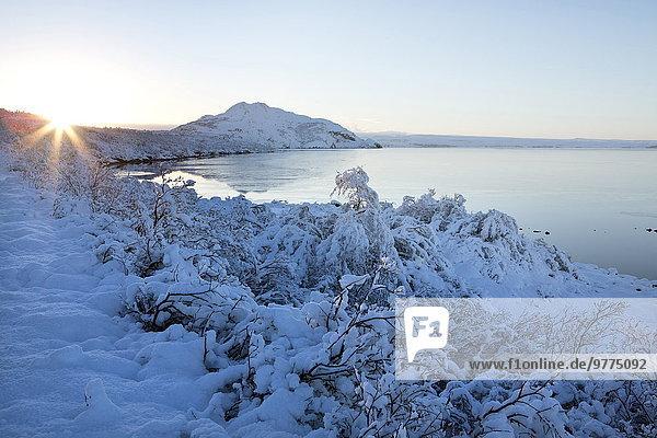 entfernt Wasserrand durchsichtig transparent transparente transparentes Berg bedecken See Ansicht Nachmittag UNESCO-Welterbe Distanz Island Schnee