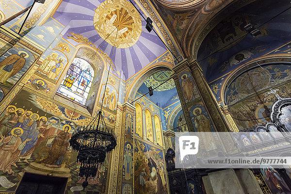 Europa Fenster Glas Schmutzfleck Kathedrale Regenwald Bulgarien