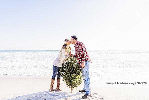 nebeneinander neben Seite an Seite Liebe Strand Baum küssen