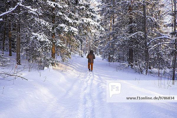 gehen Junge - Person Schnee Feld