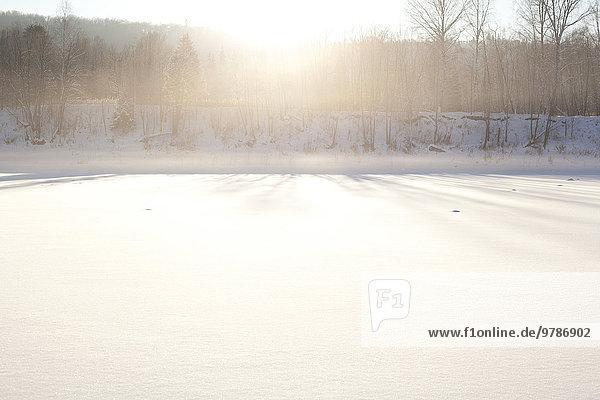 beleuchtet über Schnee Feld Sonne