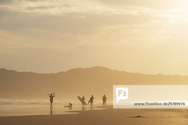 Surfer in the evening in backlight  beach at Sedgefield  South Africa  Africa