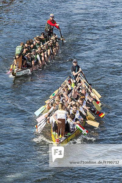 Drachenboot Regatta  Wettkampf  Mülheim an der Ruhr  Nordrhein-Westfalen  Deutschland  Europa