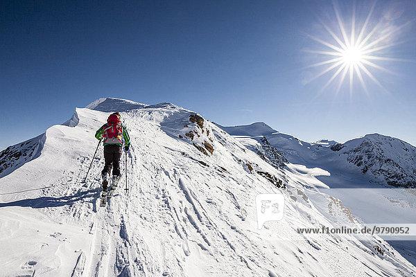 Skitourengeher beim Aufstieg auf die Suldenspitz  am Gipfelgrat  hinten der Cevedale und die Zufallspitz  Sulden  Ortlergebiet  Ortlergruppe  Nationalpark Stilfser Joch  Vinschgau  Südtirol  Trentino-Südtirol  Italien  Europa